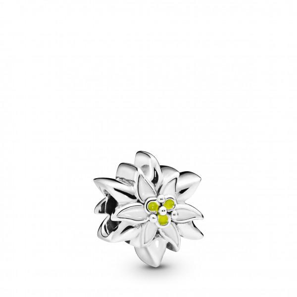 PANDORA Charm Edelweiss Flower - 798243ENMX
